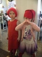 Serkukset Iisa ja Mimosa pikkujoulut