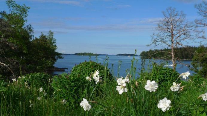 Villa Salmela sijaitsee Helsingissä upealla paikalla meren rannalla.